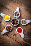 Dry spices in spoon. Royalty Free Stock Photography