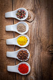 Dry spices in spoon. Stock Images