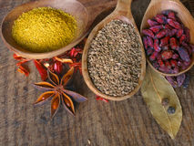 Dry spices on the wooden board Stock Images