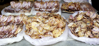 Dry squid at fresh local market Royalty Free Stock Image