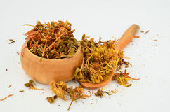 Dry St. John's Wort Stock Photo