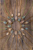 Dry stalks poppy heads lying on a wooden board and arranged in a. Dry stalks poppy heads lying on a old rough wooden board and arranged in a circle Royalty Free Stock Photos