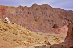 Dry stone desert Stock Image