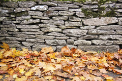 Dry stone wall autumn leaves background. Fallen autum leaves lying on ground next to traditional dry stone wall in bilbury village in the cotswalds england Royalty Free Stock Photo