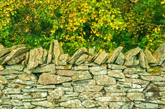 Dry Stone Wall,Autumn Trees Royalty Free Stock Photography