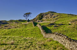 Dry stone wall in countryside Royalty Free Stock Images