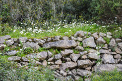 Dry stone wall covered with a bed of white flowers and grass Stock Photo