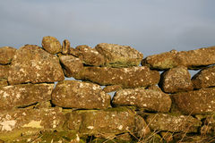 Dry Stone Wall, Dartmoor. An ancient dry stone wall, covered in lichen and moss, lit by early morning sun against an overcast sky Royalty Free Stock Image