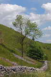 Dry stone wall in Derbyshire England. Royalty Free Stock Photography