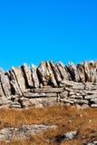 Dry Stone Wall - Lessinia Italy Stock Images