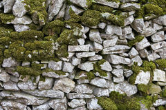 Dry Stone Wall with Moss Stock Photos