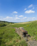 Dry stone wall in rural countryside landscape with grassy hillside, trees and blue sky with clouds in Yorkshire Royalty Free Stock Image
