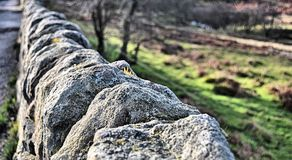 Dry stone wall. Set in the Derbyshire Dales at Padley Gorge with beautiful light and scenery Royalty Free Stock Image