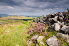 Dry stone wall on Simonside Hills Royalty Free Stock Images