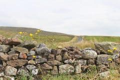 Dry Stone Wall Stock Photos