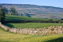 Dry stone wall in yorkshire dales. Wensleydale yorkshire dales national park small fields divided by dry stone walls with the hills in background Stock Images