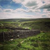 Dry stone yorkshire wall Stock Image