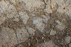 Dry, stony ground Stock Image