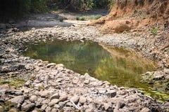 Dry stony river bed. Sunny summer day Stock Image