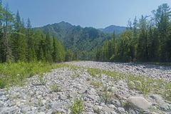 Dry stony river bed. Sunny summer day, the end of July. The Oka Sayanskaya River in the Orkho-Bom gorge. East Sayan. Buryatia, Siberia, Russia Stock Photos