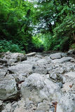 Dry stony riverbed of the river Royalty Free Stock Photos