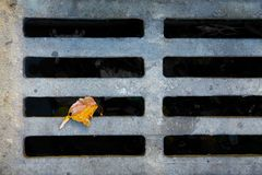 A dry stormdrain Royalty Free Stock Image