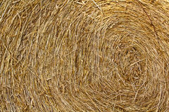Dry straw Royalty Free Stock Photography