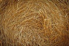 Dry straw. Background Royalty Free Stock Photo