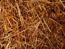 Dry straw background texture. Dry orange straw background texture stock photography