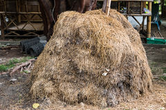 Dry straw Royalty Free Stock Images