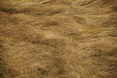 Dry straw field in a sunny day. Close-up of cut dry straw field in a sunny day, making a quaint pattern at the Loriga village. Known as the Portuguese stock images