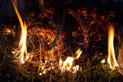 Dry straw fire. Fire over dry straw in the night Royalty Free Stock Images