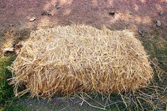 Dry straw, hay, stack on ground Stock Photography