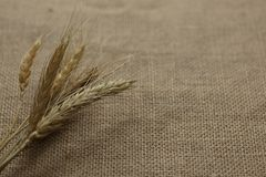 Straw linen cloth wallpaper background. Dry straw linen cloth wallpaper background stock images