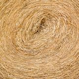Dry straw macro shot Royalty Free Stock Photo