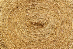 Dry straw roll royalty free stock photo