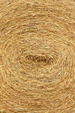 Dry straw roll Stock Image
