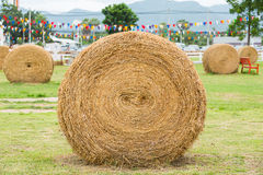 Dry straw roll Stock Photography