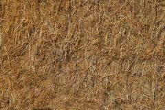 Dry straw yellow in color and compacted into bales .Texture or background. Pressed dry straw yellow .Texture or background stock photo