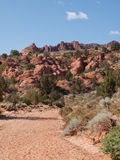 Dry stream bed through red cliffs Stock Images