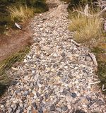 A dry stream bed of stones and twigs. A dry stream bed of pebbles and water worn sticks in Patagonia Stock Photos