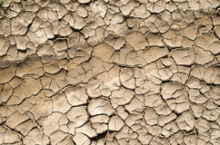 Dry stream, cracked and dried mud Stock Image