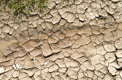 Dry stream, cracked and dried mud Stock Photo