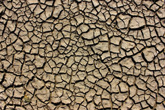 Dry summer clay dirt floor. Dry cracking clay ground in summer Royalty Free Stock Photo
