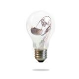 Dry sunflower on light bulb. Inside Stock Image