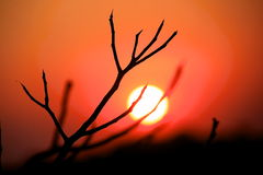 Dry Sunset. Summertime Sunset in Krabi, Thailand Royalty Free Stock Image