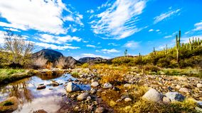 The almost dry Sycamore Creek in the McDowell Mountain Range in Northern Arizona stock photo