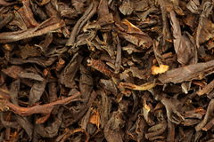 Dry tea Royalty Free Stock Image