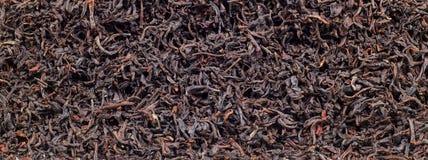 Dry tea Royalty Free Stock Photos
