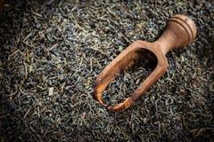 Dry tea Royalty Free Stock Photo
